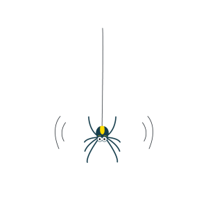 A Bouncing Spider